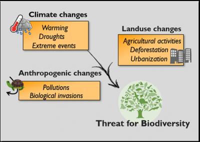 major global changes - anthropogenic changes - landuses changes