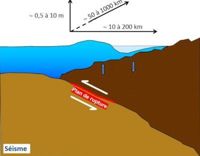 tsunami - tsunamis - seisme - zone subduction