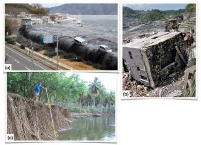 tsunamis - tsunami Miyako - tsunami Onagawa - tsunami Nuku-Hiva
