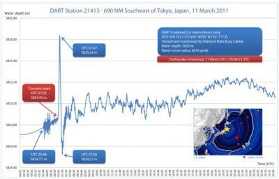 tsunamis - amplitude tsunami - ondulations ondes tsunamis
