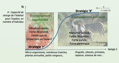 Evolution espace environnement imprévisible
