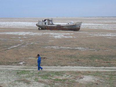 Vestiges ara ecosystem destruction sea