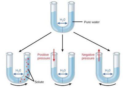 semi-permeable-water-tube